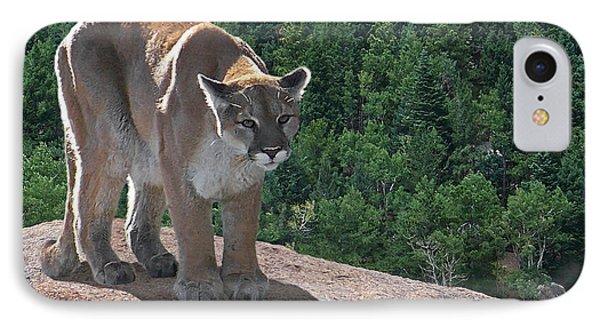 The Cougar 1 Phone Case by Ernie Echols