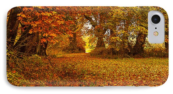 The Covered Path IPhone Case by Cassius Johnson