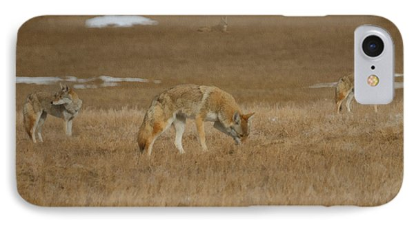 The Coyotes Painterly Phone Case by Ernie Echols