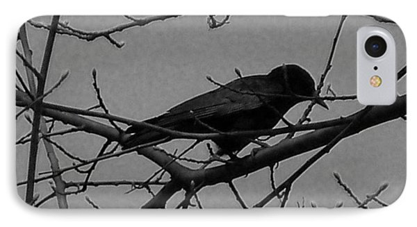 The Crow IPhone Case by Heather L Wright