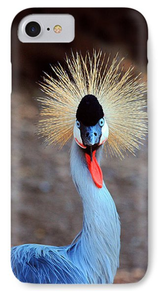 The Crowned Crane IPhone Case by Trina  Ansel