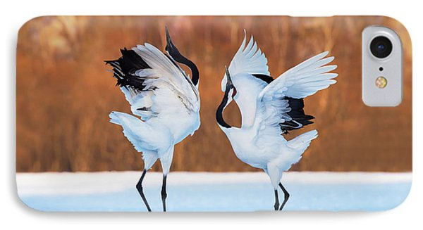 The Dance Of Love IPhone Case by C. Mei