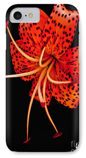 The Dance Of The Tiger Lily  IPhone Case by Carol F Austin