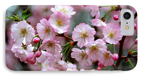 IPhone Case featuring the photograph The Delicate Cherry Blossoms by Patti Whitten