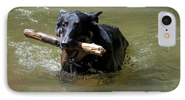The Dog Days Of Summer Phone Case by Bill Cannon