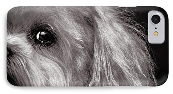 The Dog Next Door Phone Case by Bob Orsillo