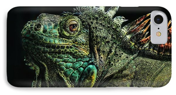 The Dragon IPhone Case by Joachim G Pinkawa