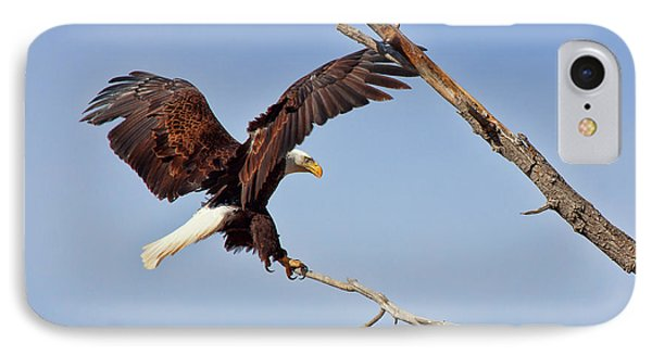 IPhone Case featuring the photograph The Eagle Eye by Jim Garrison