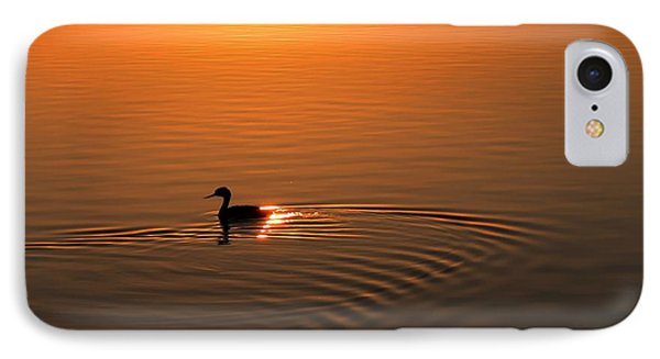 IPhone Case featuring the photograph The Early Bird by Richard Stephen