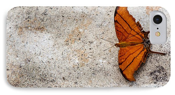 The Elusive Butterfly  Phone Case by Rene Triay Photography