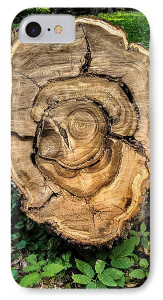 IPhone Case featuring the photograph The End Of A Tree Life Tale by Vladimir Kholostykh