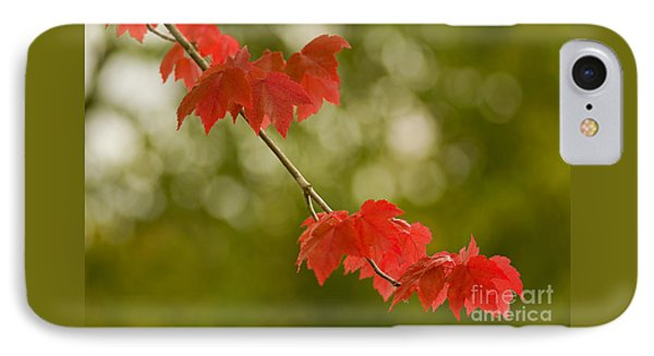 The Essence Of Autumn IPhone Case by Nick  Boren