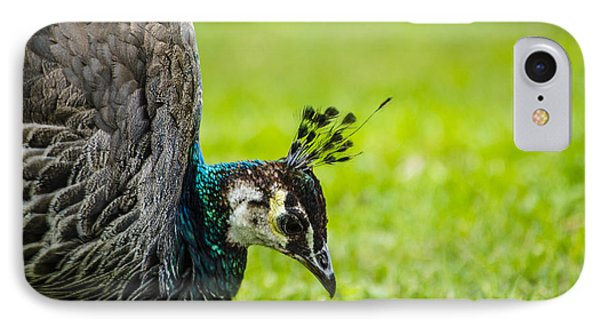 The Face Of A Peacock Phone Case by Deborah Smolinske