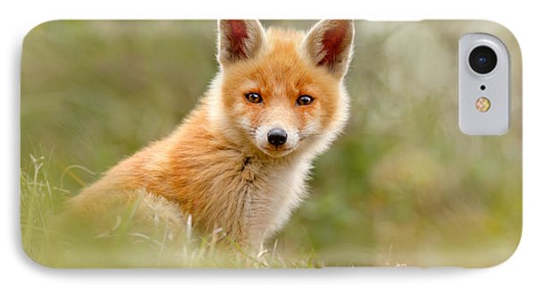 The Face Of Innocence _ Red Fox Kit IPhone Case