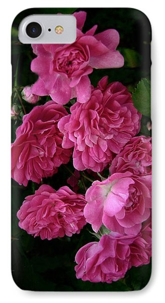 IPhone Case featuring the photograph The Fence Roses by Louise Kumpf