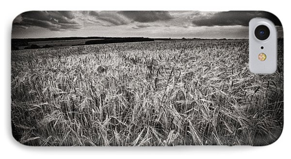 The Field 1 IPhone Case by Rod McLean