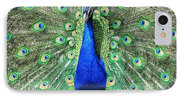 The Flirty Peacock IPhone Case