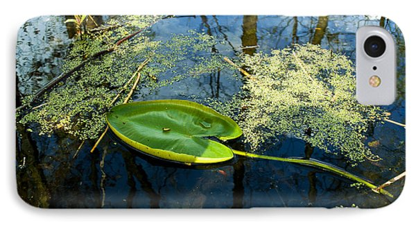IPhone Case featuring the photograph The Floating Leaf Of A Water Lily by Verana Stark