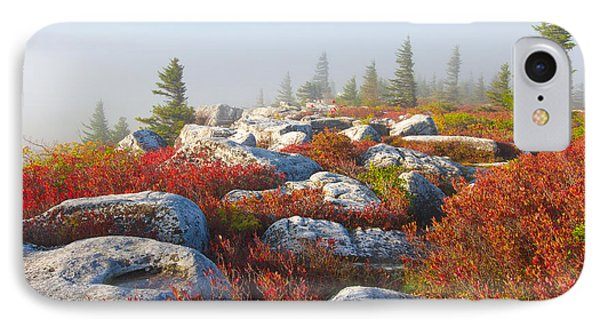 The Fog Clears At Dolly Sods IPhone Case