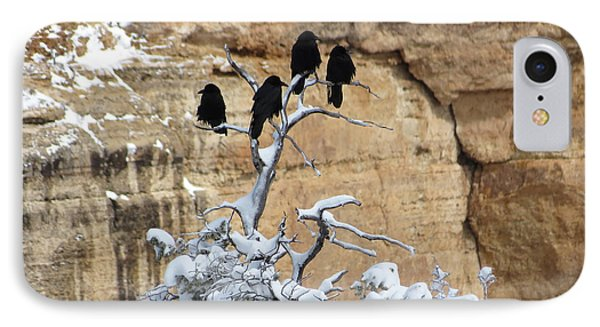 IPhone Case featuring the photograph The Four Crows by Laurel Powell