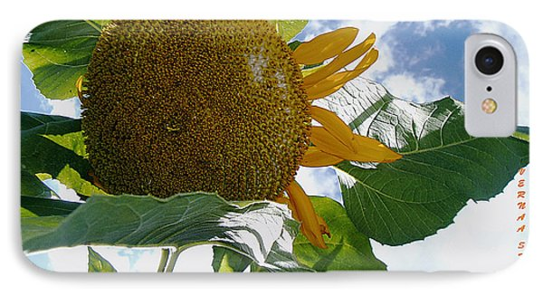 IPhone Case featuring the photograph The Gigantic Sunflower by Verana Stark