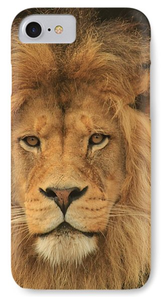 The Glory Of A King IPhone Case