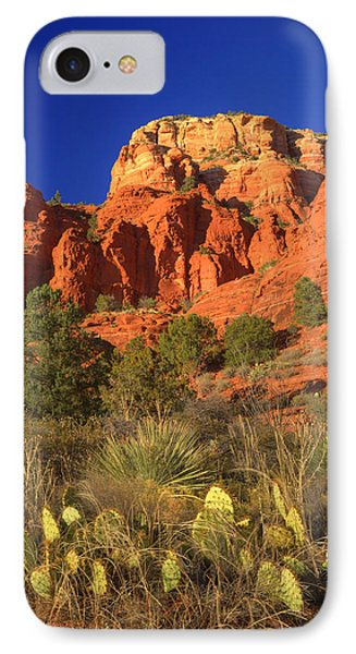 The Glory Of The Desert Red Rocks 1 IPhone Case by Douglas Barnett
