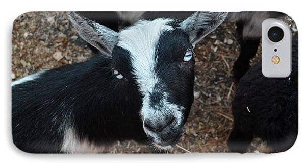 IPhone Case featuring the photograph The Goat With The Gorgeous Eyes by Verana Stark