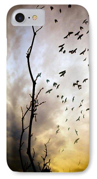 The Gods Laugh When The Winter Crows Fly IPhone Case