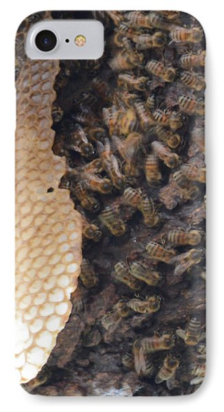 The Golden Hive  Phone Case by Shawn Marlow