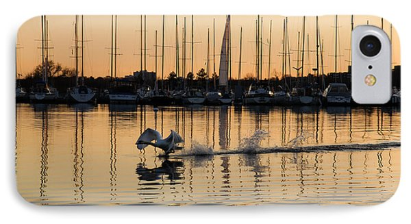 The Golden Takeoff - Swan Sunset And Yachts At A Marina In Toronto Canada IPhone Case