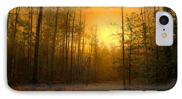 The Golden Touch Of Autumn Phone Case by Nina Fosdick