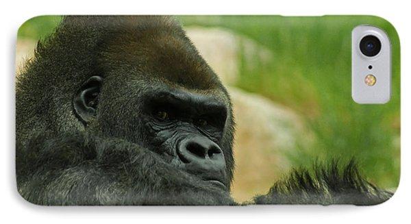 The Gorilla 2 IPhone Case by Ernie Echols