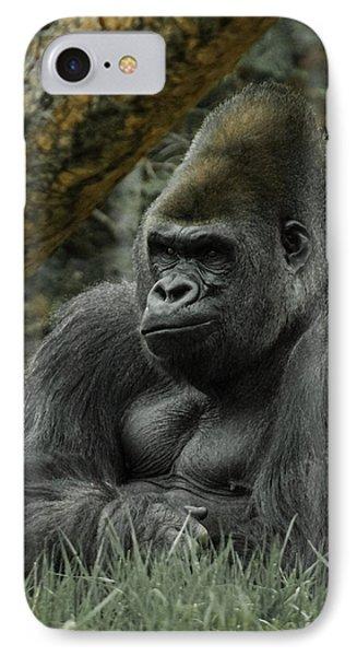The Gorilla 3 IPhone Case by Ernie Echols