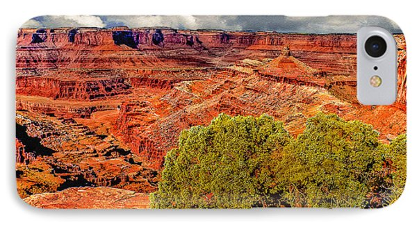 The Grand Canyon Dead Horse Point Phone Case by Bob and Nadine Johnston