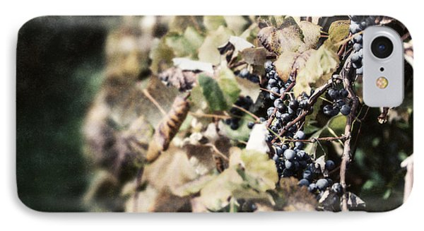 The Grapevines Phone Case by Lisa Russo