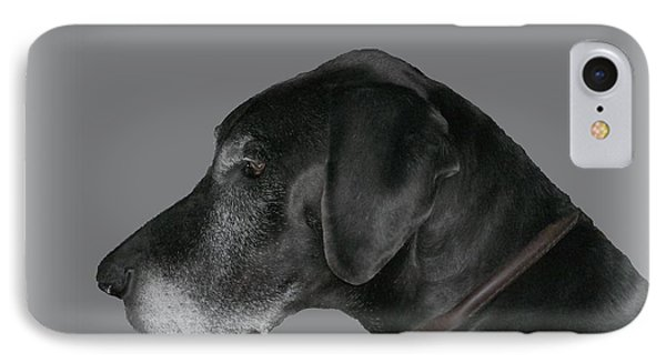 The Great Dane IPhone Case by Barbara S Nickerson