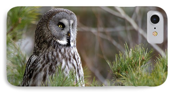 The Great Grey Owl IPhone Case by Torbjorn Swenelius