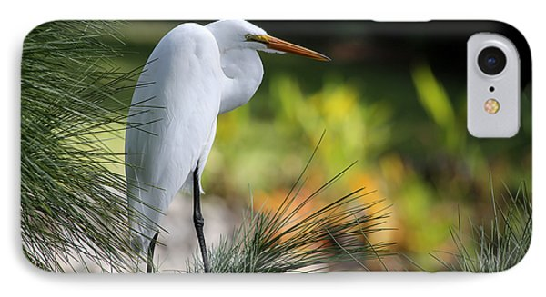 The Great White Egret IPhone Case by Sabrina L Ryan