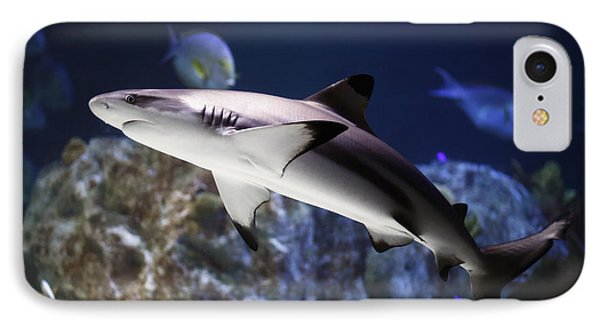 The Grey Reef Shark - Carcharhinus Amblyrhynchos IPhone Case by Goyo Ambrosio