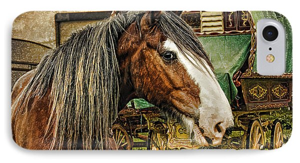 The Gypsy Vanner IPhone Case by Brian Tarr