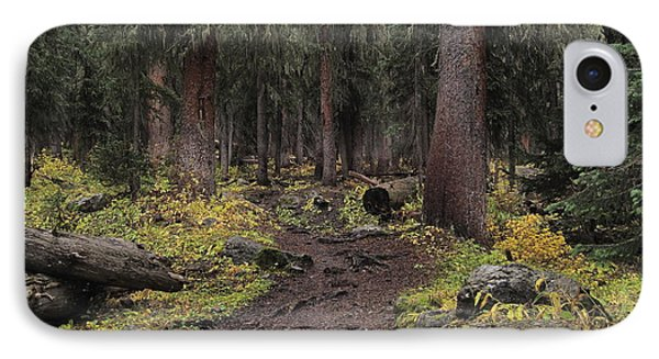 The High Forest Phone Case by Eric Glaser