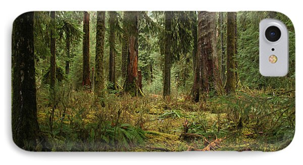 The Hoh Rainforest IPhone Case by John Bushnell