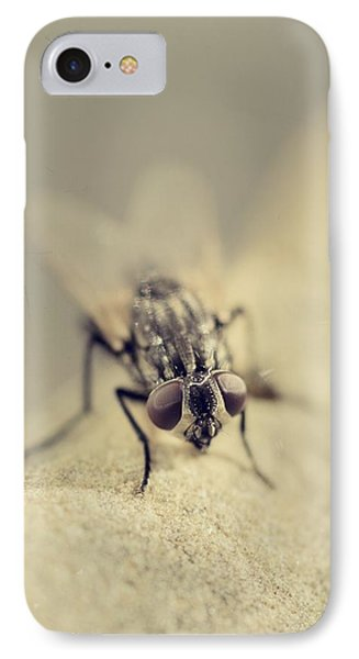 The Housefly I IPhone Case by Marco Oliveira