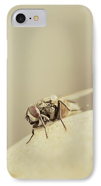 The Housefly II IPhone Case by Marco Oliveira
