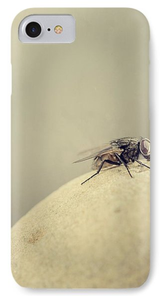 The Housefly IIi IPhone Case by Marco Oliveira