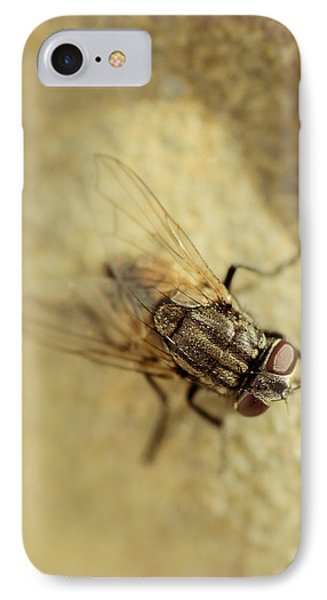 The Housefly Vi IPhone Case by Marco Oliveira