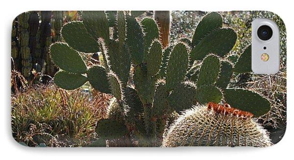 The Huntington Desert Garden Phone Case by Rona Black