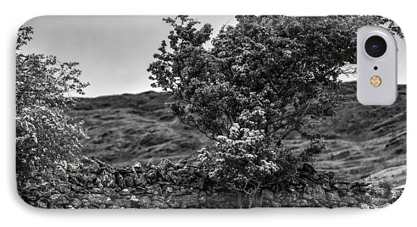 IPhone Case featuring the photograph The Irish Wall And The Tree by Juergen Klust