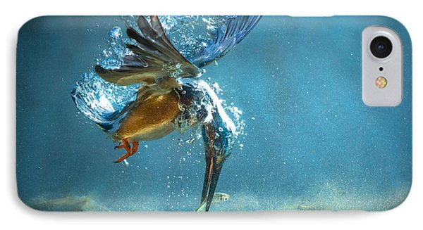The Kingfisher IPhone 7 Case
